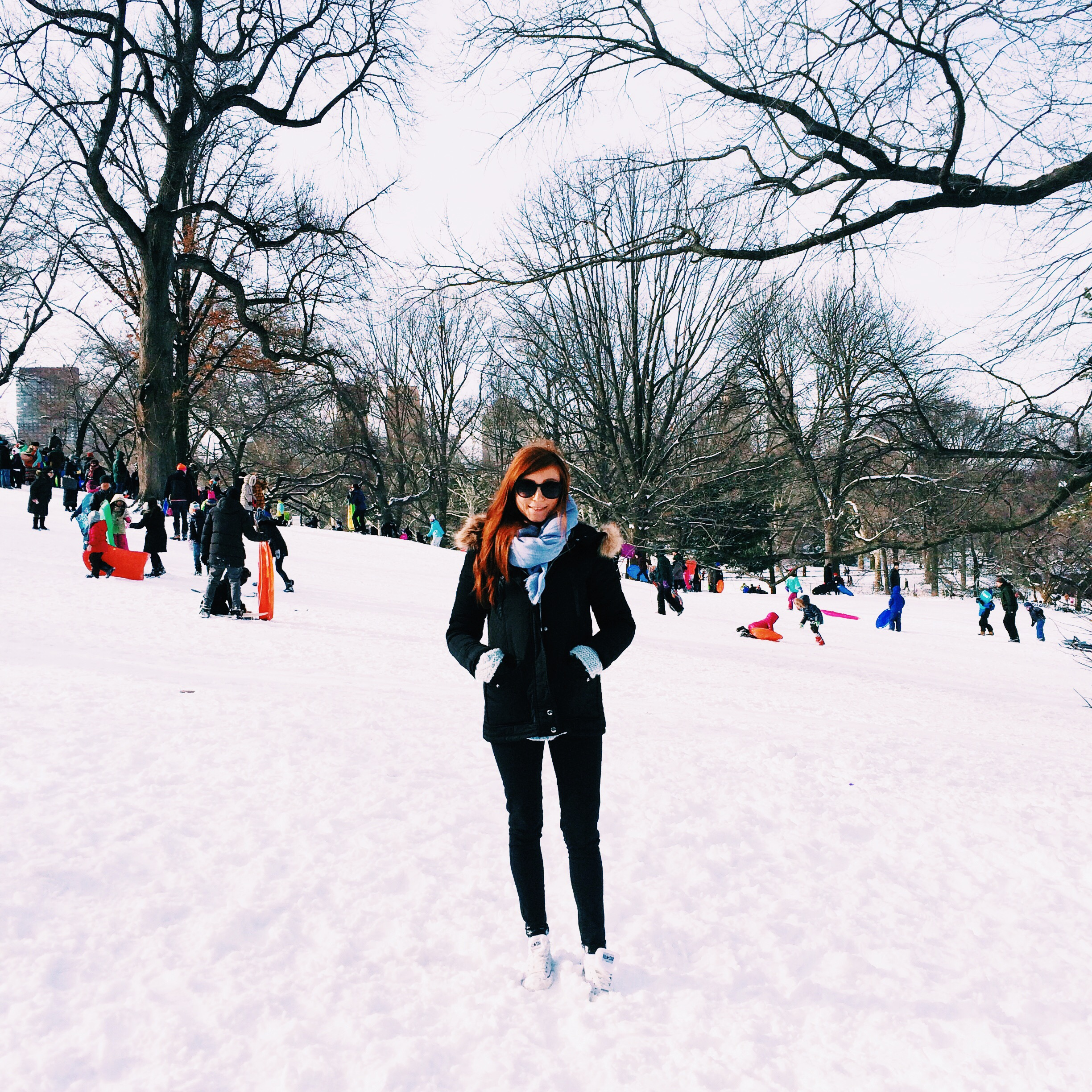 Snow Day - Blizzard of 2015 - New York