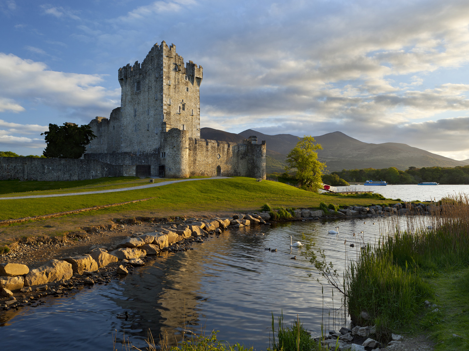 Ireland - County Cork - Killarney National Park. Near Killarney -  Ross Castle on Lough Leane